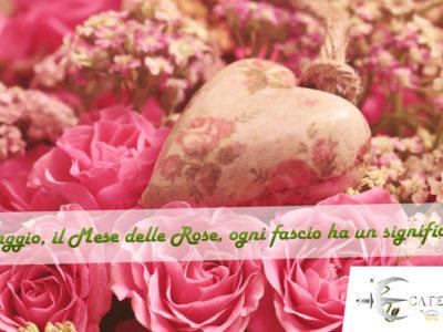Maggio, il Mese delle Rose, ogni fascio ha un significato